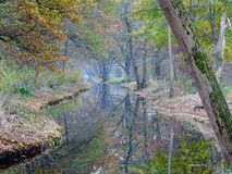 Fairy tail scene of ditch with trees reflecting in the water. stock photos