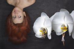 Fairy tale Stock Photography
