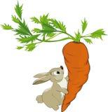Fairy tale about a bunny Stock Photos