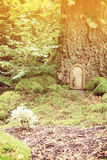 Fairy tale door Stock Photos