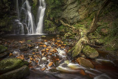 Fairy tale fall. The picturesque Potsforth Gill waterfall in Yorkshie Stock Photo
