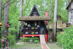Fairy tale flower house in the woods royalty free stock images