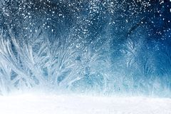 Fairy tale forest on window frost. Design of fairy tale forest with snowfall on window frost Stock Image