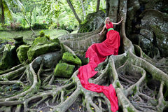 Fairy tale 5. Girl in long red dress lying on the huge roots of a tropical tree. Fairy Tale in tropical forest. Exotiс bird in the rain forest Royalty Free Stock Photography