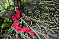 Fairy tale 6. Girl in long red dress lying on the huge roots of a tropical tree. Fairy Tale in tropical forest. Exotic bird in the rain forest Stock Images