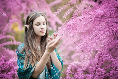 Fairy tale girl. Portrai of mystic elf woman. royalty free stock photography