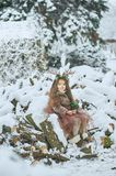 Fairy tale girl. Portrait a little girl in a deer dress with a painted face in the winter forest. Big brown antler. Fantasy girl with christmas bells. Snowy stock image