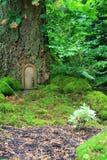 Fairy tale house. Littel fairy tale door in a tree trunk Stock Images