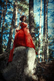 Fairy-tale image of a girl in the forest royalty free stock image