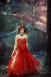 Fairy-tale image of a girl in the forest stock photography