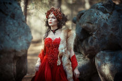 Fairy-tale image of a girl in the forest royalty free stock images