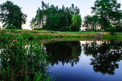 Fairy-tale lake in the forest. Background. Nature Stock Photos