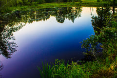 A fairy-tale lake in the forest, the trees are reflected in the water. Background. Nature. Royalty Free Stock Photos