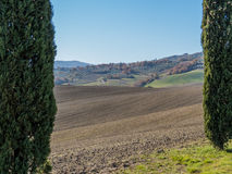 Fairy tale landscape. With cultivated fields, cypresses and countryside houses against blue sky. In the Val d'Orcia region (or Valdorcia) in Royalty Free Stock Photography