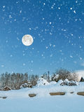 Fairy-tale landscape with snow-covered garden in winter evening Stock Photos