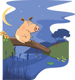 A fairy tale about a pig and a small river Royalty Free Stock Images