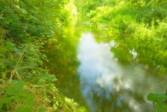 River Nar in summer. Royalty Free Stock Photography