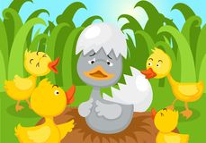 Free Fairy Tale Ugly Duckling Royalty Free Stock Image - 113551276