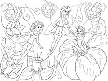 Fairy-tale world of fairies coloring book for children cartoon vector illustration Royalty Free Stock Photos