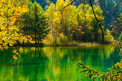 The fairy tale world. The genial sunshine, clear lakes, colorful trees,Here is like a fairy tale world Stock Photography