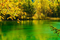 The fairy tale world. The genial sunshine, clear lakes, colorful trees,Here is like a fairy tale world Stock Photos
