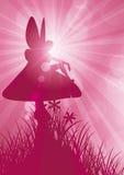 Fairy on toadstool 1. Pink rays of sunlight surrounding fairy sat on toadstool Royalty Free Stock Photo