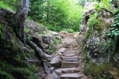 Fairy trail. High falls grand mariras MN Royalty Free Stock Photo
