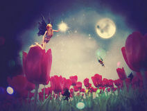 Fairy and Tulips Stock Images