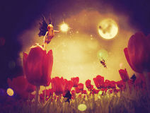 Fairy and Tulips Stock Image