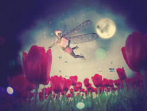 Fairy and Tulips Royalty Free Stock Photography