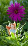 Fairy on vegetation Royalty Free Stock Image