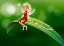 A fairy with a wand sitting at the leaf. Illustration of a fairy with a wand sitting at the leaf Royalty Free Stock Photos