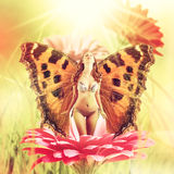Fairy with wings on a flower Stock Images