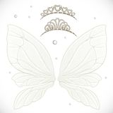 Fairy wings with tiara bundled Stock Photography