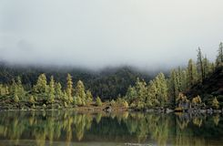 Fairyland. Colorful trees around the clear lake, mist around the hills, everything just like in fairyland Stock Image