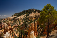 Fairyland Canyon Overlook E Stock Images