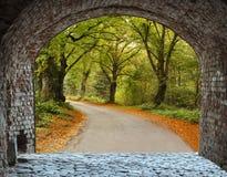 Fairyland near Cesis city, Latvia Stock Photo