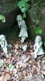 Fairys在森林里 库存照片