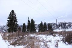 fairytail зимы темное и странное стоковое фото