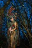 fairytale Imagen de archivo libre de regalías