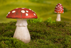 Fairytale background. With agaric toadstools and moss stock photo