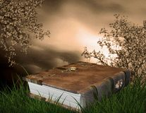 Fairytale book. Fantasy faerie book with grassy surrounding Stock Photography