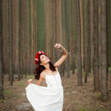 Fairytale in bos Royalty-vrije Stock Afbeelding