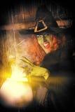 Fairytale hero Stock Photos