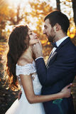 Fairytale romantic valentyne newlywed couple hugging and posing Stock Images