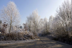 Fairytale snowy freeze winter countryside with blue Sky in Bohemia, Czech Republic Royalty Free Stock Images