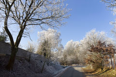 Fairytale snowy freeze winter countryside with blue Sky in Bohemia, Czech Republic Royalty Free Stock Photo