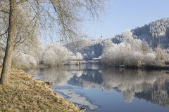 Fairytale snowy winter countryside with frosted icy Trees and Plants Royalty Free Stock Photo