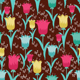 Fairytale tulips Stock Images