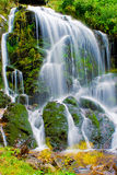 A fairytale waterfall in the black wood Germany Stock Photo